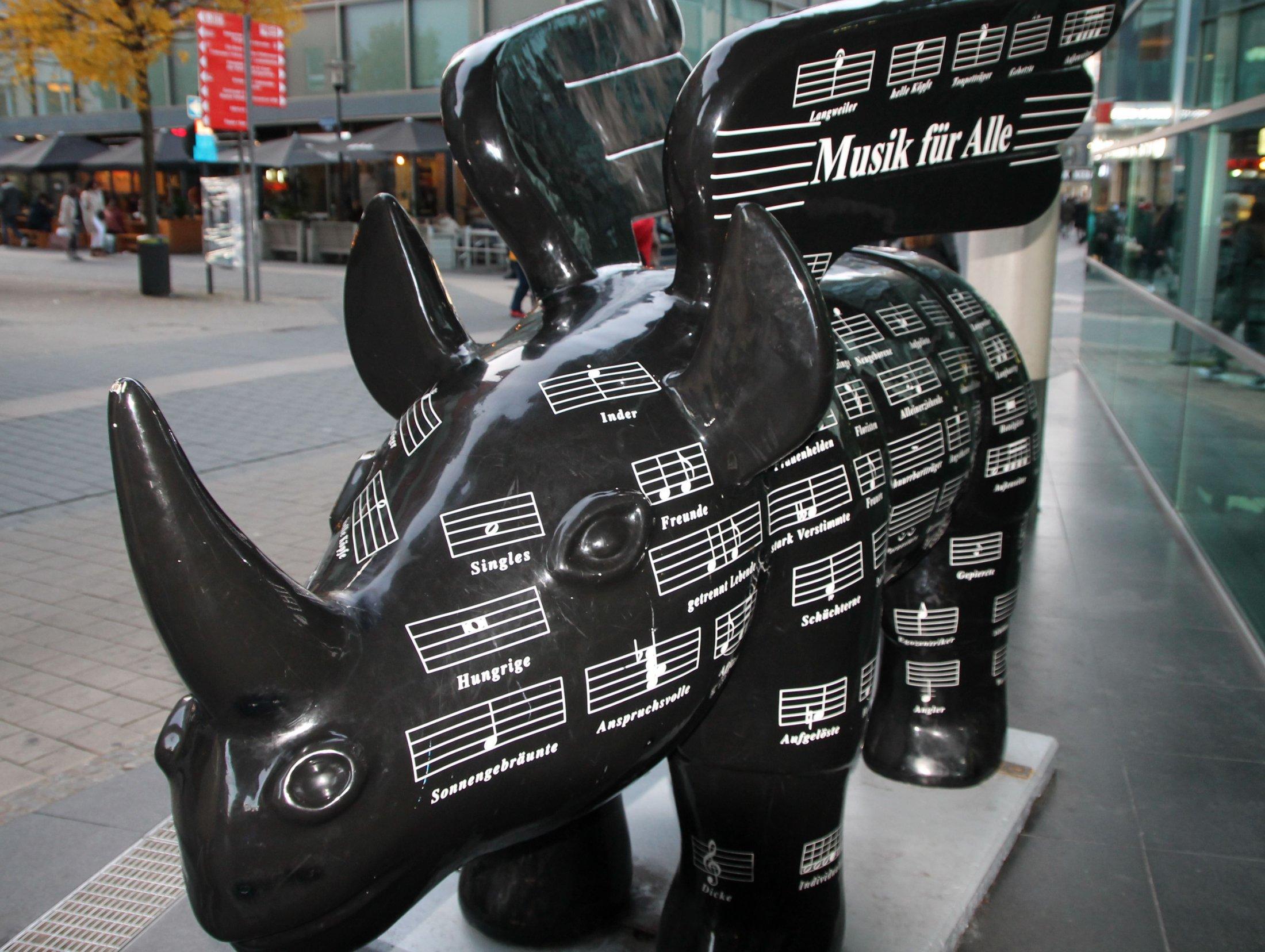 Rhino, schwarz