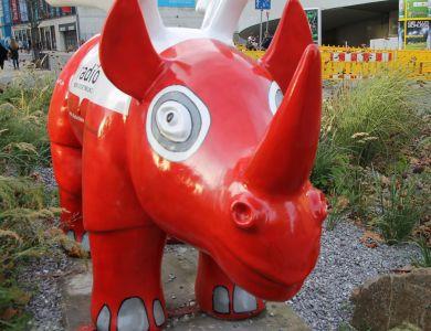 Rhino, rot